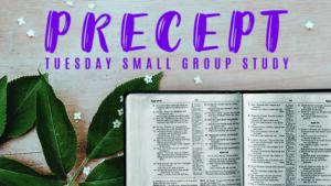 Precept Tuesday Bible Study