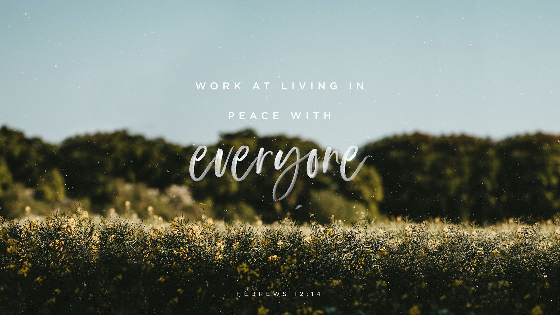 Work at living in peace with everyone.