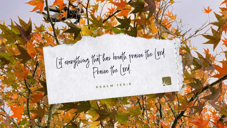 Let everything that has breath praise the Lord. Praise the Lord. (Psalm 150:6, NIV)