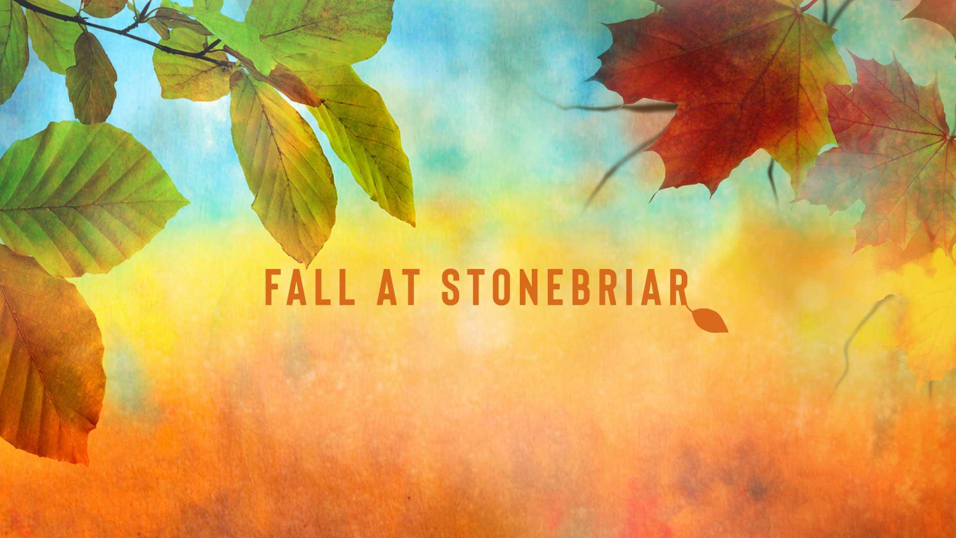 Fall Highlights at Stonebriar
